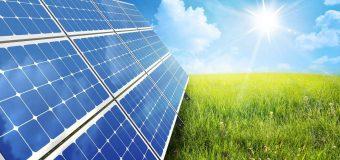 Sposoby na ekologiczne oszczędności w Twojej firmie