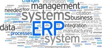 Strony internetowe jako systemy ERP