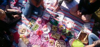 Urządzamy firmowy piknik – na co warto zwrócić uwagę?