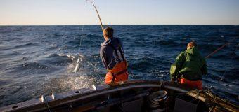 Wędkarstwo i biznes – sztuka szlifowania charakteru