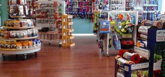 Zakładamy sklep zoologiczny – stacjonarnie czy online?