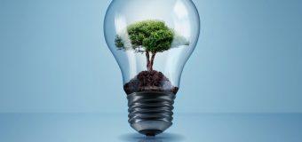 Tniemy koszty – kilka prostych sposobów na eko biznes
