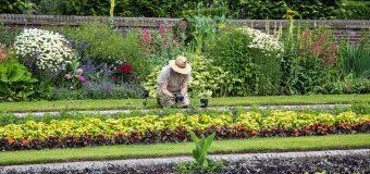 Ogrodnik- czy na pewno wiesz czym się wiąże ta praca?