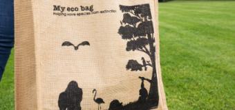 Pomysł na biznes: produkcja toreb przyjaznych dla środowiska