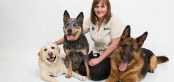Wykształcony trener psów – to nie wymysł, to konieczność. Sprawdź opcje