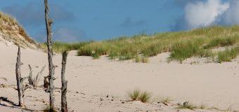 Od festiwalu po spacer na plaży – co jeszcze Łeba ma do zaproponowania?
